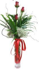Denizli yurtiçi ve yurtdışı çiçek siparişi  3 adet kirmizi gül vazo içerisinde