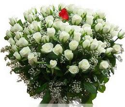 Denizli online çiçekçi , çiçek siparişi  100 adet beyaz 1 adet kirmizi gül buketi