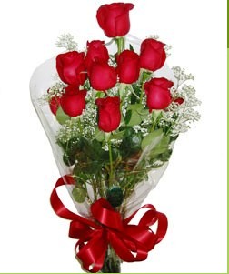 Denizli çiçek satışı  10 adet kırmızı gülden görsel buket