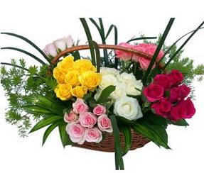 Denizli çiçek mağazası , çiçekçi adresleri  35 adet rengarenk güllerden sepet tanzimi