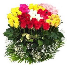 Denizli internetten çiçek satışı  51 adet renkli güllerden aranjman tanzimi
