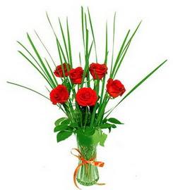 Denizli çiçek servisi , çiçekçi adresleri  6 adet kırmızı güllerden vazo çiçeği