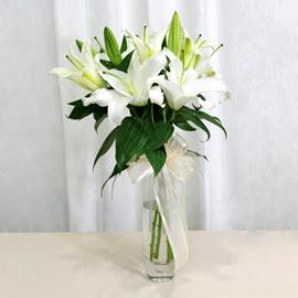 Denizli ucuz çiçek gönder  2 dal kazablanka ile yapılmış vazo çiçeği