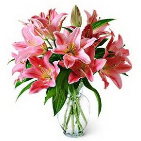 3 dal kazablanka görsel vazosu  Denizli İnternetten çiçek siparişi