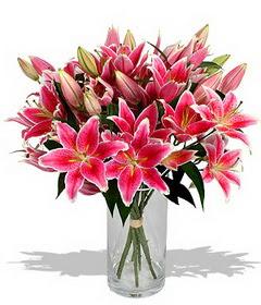 4 dal cazablanca görsel vazosu  Denizli güvenli kaliteli hızlı çiçek