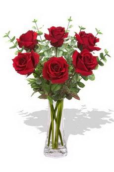 Denizli güvenli kaliteli hızlı çiçek  6 kırmızı gül vazosu