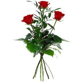 Denizli çiçek satışı  3 adet kırmızı gülden buket