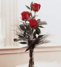 Denizli online çiçekçi , çiçek siparişi  Vazoda 3 adet güzel gül