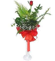 Denizli ucuz çiçek gönder  Cam vazoda masum tek gül
