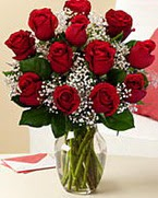Sevgilime hediye 9 adet 1.ci kalite gül  Denizli ucuz çiçek gönder