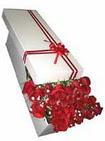 Denizli hediye sevgilime hediye çiçek  11 adet 1.kalite magnum güller