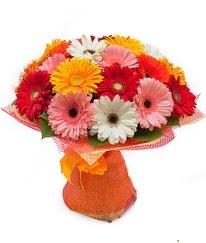 Renkli gerbera buketi  Denizli ucuz çiçek gönder
