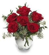 Vazo içerisinde 5 adet kırmızı gül  Denizli güvenli kaliteli hızlı çiçek