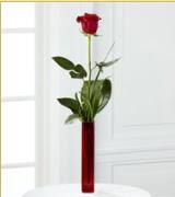 Vazo içerisinde 1 adet kırmızı gül  Denizli İnternetten çiçek siparişi