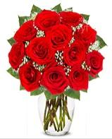 12 adet vazoda kıpkırmızı gül  Denizli çiçek gönderme