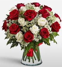 Vazoda 12 kırmızı 12 beyaz gül tanzimi  Denizli çiçek satışı