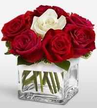 Tek aşkımsın çiçeği 8 kırmızı 1 beyaz gül  Denizli çiçek satışı