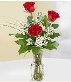 Vazo içerisinde 3 adet kırmızı gül  Denizli çiçek online çiçek siparişi