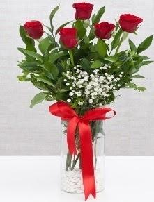 cam vazo içerisinde 5 adet kırmızı gül  Denizli çiçekçi telefonları
