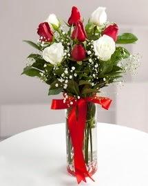 5 kırmızı 4 beyaz gül vazoda  Denizli çiçekçi telefonları