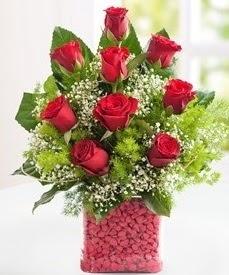 Cam içerisinde 9 adet kırmızı gül  Denizli online çiçekçi , çiçek siparişi