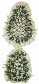 Denizli çiçek yolla , çiçek gönder , çiçekçi   Model Sepetlerden Seçme 3