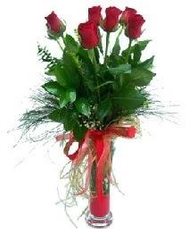 vazo içerisinde 5 kırmızı gül  Denizli internetten çiçek siparişi