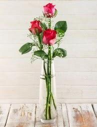 Cam içerisinde 3 kırmızı gül  Denizli çiçek online çiçek siparişi