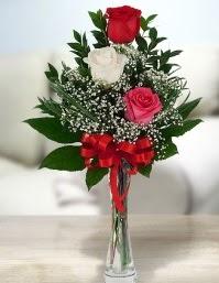 Camda 2 kırmızı 1 beyaz gül  Denizli çiçek mağazası , çiçekçi adresleri
