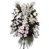 Denizli çiçek gönderme  Ferforje beyaz renkli kazablanka