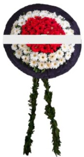 mozele çiçeği  Denizli hediye çiçek yolla