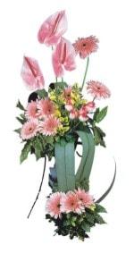 Denizli internetten çiçek siparişi  Pembe Antoryum Harikalar Rüyasi