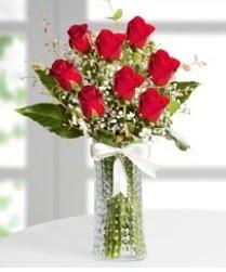 7 Adet vazoda kırmızı gül sevgiliye özel  Denizli yurtiçi ve yurtdışı çiçek siparişi