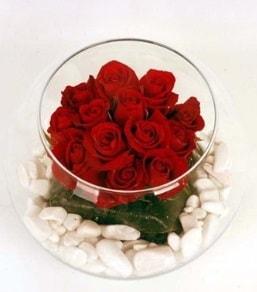 Cam fanusta 11 adet kırmızı gül  Denizli anneler günü çiçek yolla