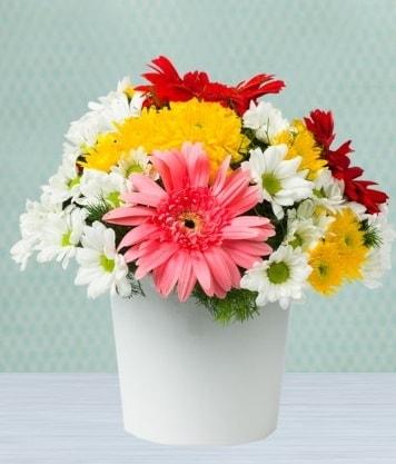 Seramik Vazoda Gelbera ve Papatya  Denizli anneler günü çiçek yolla