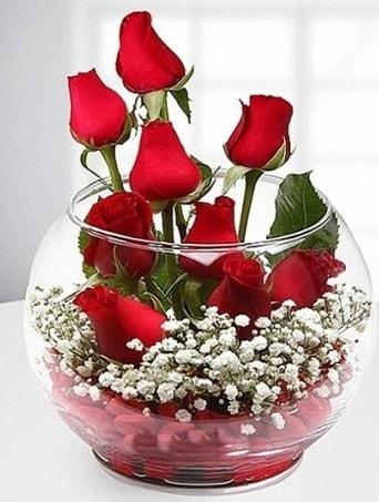 Kırmızı Mutluluk fanusta 9 kırmızı gül  Denizli yurtiçi ve yurtdışı çiçek siparişi