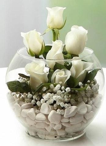 Beyaz Mutluluk 9 beyaz gül fanusta  Denizli yurtiçi ve yurtdışı çiçek siparişi