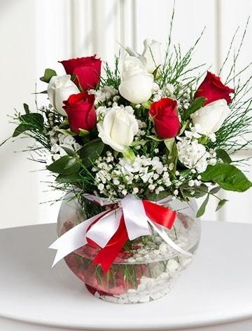 Aşk Küresi  5 beyaz 5 kırmızı gül fanusta  Denizli online çiçekçi , çiçek siparişi