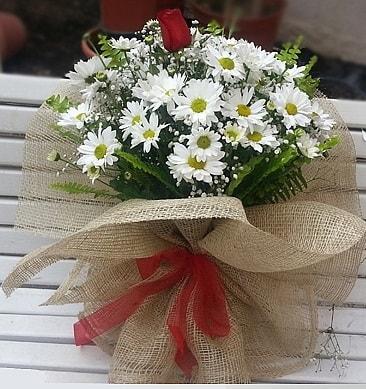Papatya 1 adet kırmızı gül buketi  Denizli çiçek yolla , çiçek gönder , çiçekçi