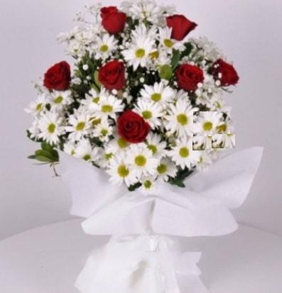 7 adet kırmızı gül ve papatyalar krizantem  Denizli online çiçekçi , çiçek siparişi
