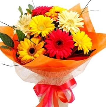 9 adet karışık gerbera buketi  Denizli çiçek servisi , çiçekçi adresleri