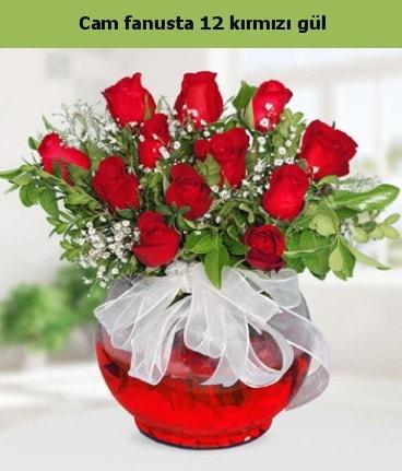 Cam içerisinde 12 adet kırmızı gül  Denizli online çiçekçi , çiçek siparişi