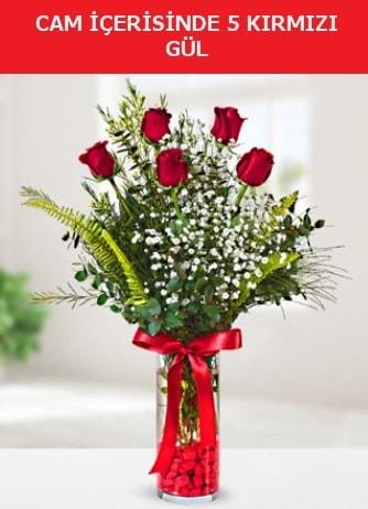 Cam içerisinde 5 adet kırmızı gül  Denizli yurtiçi ve yurtdışı çiçek siparişi