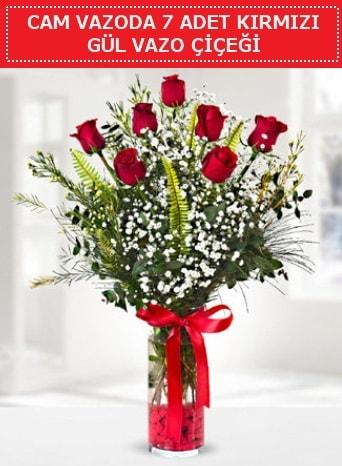 Cam vazoda 7 adet kırmızı gül çiçeği  Denizli uluslararası çiçek gönderme