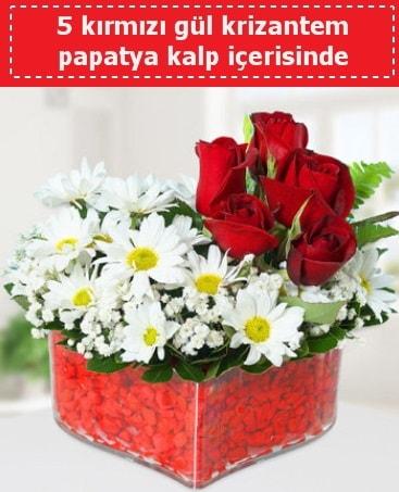 mika kalp içerisinde 5 kırmızı gül papatya  Denizli anneler günü çiçek yolla