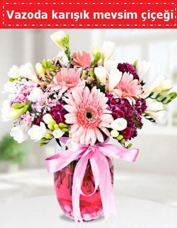 Vazoda karışık mevsim çiçeği  Denizli çiçek servisi , çiçekçi adresleri