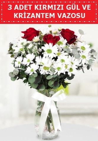 3 kırmızı gül ve camda krizantem çiçekleri  Denizli anneler günü çiçek yolla