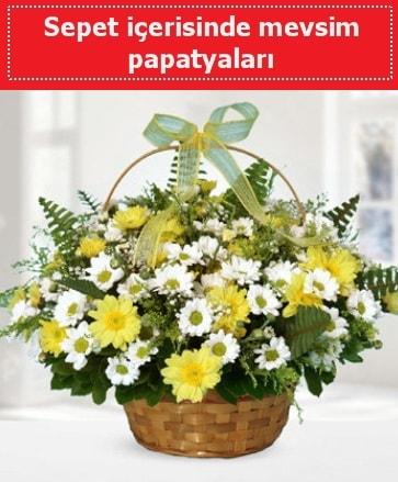 Sepet içerisinde mevsim papatyaları  Denizli çiçek mağazası , çiçekçi adresleri