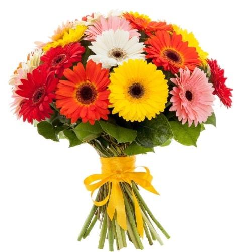 Gerbera demeti buketi  Denizli çiçek online çiçek siparişi