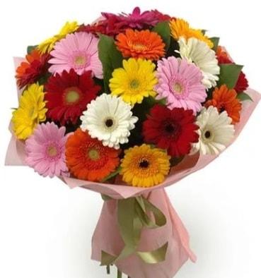 Karışık büyük boy gerbera çiçek buketi  Denizli çiçek online çiçek siparişi